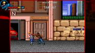 Double Dragon Trilogy купить