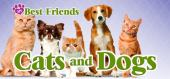 Купить My Best Friends - Cats & Dogs