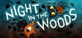 Night in the Woods купить