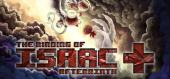 Купить The Binding of Isaac: Afterbirth Plus