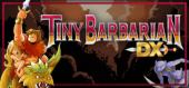 Купить Tiny Barbarian DX
